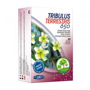 TRIBULUS TERRESTRIS 650 60 CAPSULAS ORTHONAT