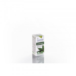Aceite Esencial Laurel noble - BIO 5 ml ESENTIAL AROMS