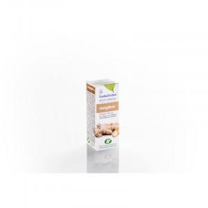 Aceite Esencial Jengibre 10 ml ESENTIAL AROMS