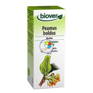 BOLDO (PEUMUS BOLDUS) 50Ml. BIOVER