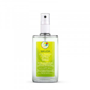 DESODORANTE SPRAY CITRUS 100Ml.