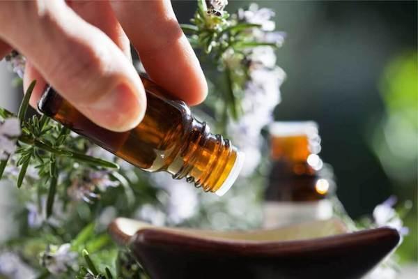 Principales diferencias entre los aceites esenciales y los aceites vegetales